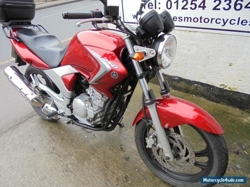 2009 yamaha ybr 250 07 for sale in united kingdom for Yamaha 250 scrambler for sale