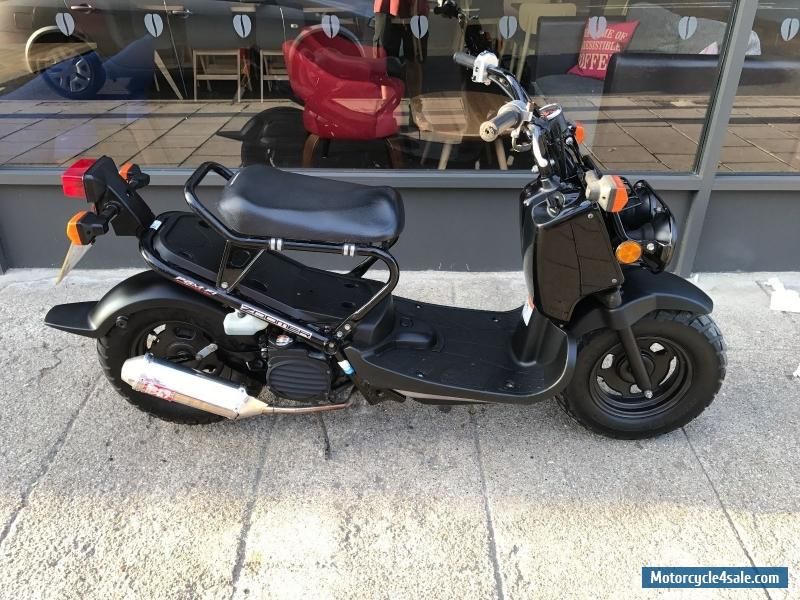 2010 honda zoomer 50 ruckus damaged salvage stollen. Black Bedroom Furniture Sets. Home Design Ideas