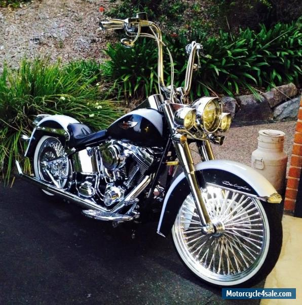 Custom Paint Jobs For Harleys Brisbane