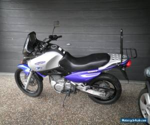 Suzuki xf 650 freewind Lams approved for Sale