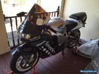 2000 HONDA CBR 900 RR FIREBLADE ...SPARES OR REPAIR / TRACK BIKE / EXPORT