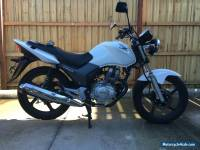 2013 HONDA CB125 e LIKE BRAND NEW only 2000 k's with 5 months rego+ RWC + manual