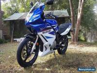 Suzuki GS500F Motorbike