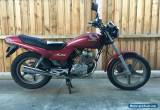 2000 Honda CB 250 LAMS approved LOW K'S, REGO + RWC + brand new tyre + spare key for Sale