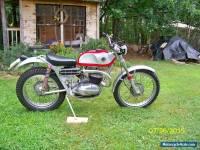 1965 Bultaco