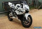 2006 Honda CBR600RR for Sale