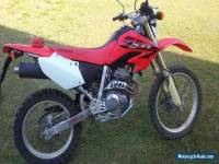 2007 Honda XR250L Trail/Dirt Bike