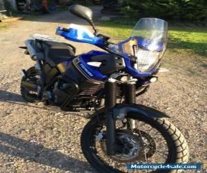 Yamaha XT660Z Tenere for Sale