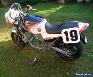Honda VF750  Freddie Spencer  with VF1000 engine  HRC works parts barn project for Sale