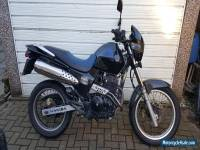 Honda FX 650 not Translap FMX BMW