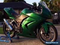 Kawasaki Ninja 250 Track Bike