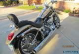 2003 Harley-Davidson Softail for Sale