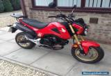 Honda MSX125 (Grom) 2014 Low Mileage Excellent Condtion. for Sale