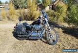 2005 Harley-Davidson 1200 custom for Sale
