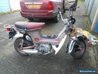 "1975 HONDA CF 70 CHALY ""MONKEY BIKE"" CHEAPEST CHALY ON THE NET not a penny less"