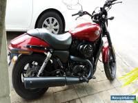 Harley Davidson Street 500 (2015)