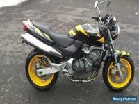 1999 HONDA CB600 HORNET YELLOW/BLACK