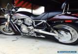 2005 Harley-Davidson STREET-ROD Vrod  1130CC Cruiser for Sale