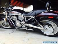 2005 Harley-Davidson STREET-ROD Vrod  1130CC Cruiser