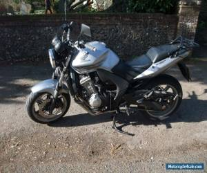 HONDA CBF600N for Sale