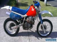 HONDA XR600 XR 600 XR600R perfect CAFE RACER PROJECT or CLUB REGISTRATION