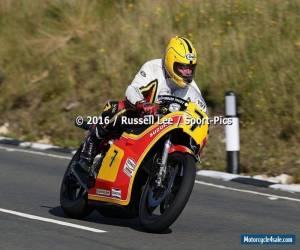 SUZUKI RG500 MK6 classic parade or race bike. for Sale
