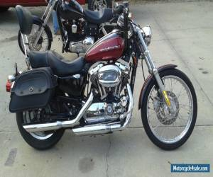 2005 Harley-Davidson Sportster for Sale