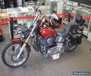 1986 Harley-Davidson Softail for Sale