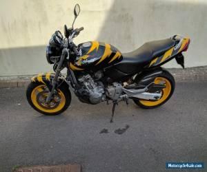 Honda Hornet CB600F for Sale