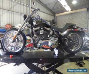 HARLEY DAVIDSON 2009 SOFTAIL CUSTOM for Sale