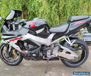 Honda cbr 900rr fireblade for Sale