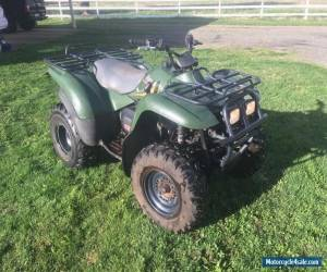 Kawasaki KVF 300 Full Automatic Hunting Farm Quad Bike ATV for Sale