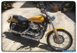 Harley Davidson Sportster 1200 Custom (XL1200C) for Sale