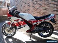 YAMAHA  RZ 350R  YPVS  1985
