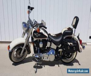 1993 Harley-Davidson Softail for Sale