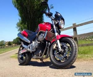 1998 HONDA CB600 HORNET RED for Sale