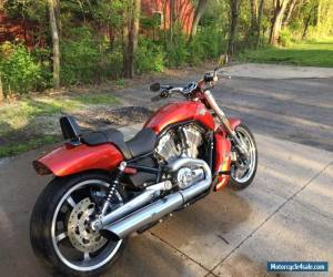 2013 Harley-Davidson VRSC for Sale