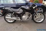Honda XBR500 for Sale