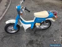 suzuki moped