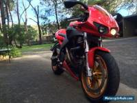 Buell Firebolt Red XB12R