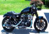 2016 Harley-Davidson Roadster for Sale