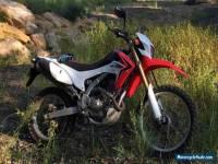 Honda CRF250L Road Registered (Pre-Lowered) Trail Bike
