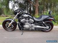 Harley Davidson Night Rod  Vrod V Rod VRSCD