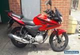 2010 Honda CBF 125 for Sale