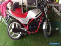 honda vt250f   1983 need to sell   make an offer i can only say no..