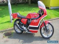 Honda Phil Read Replica