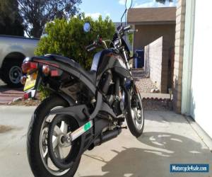 2003 Buell Blast for Sale