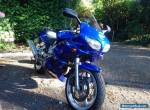 Suzuki SV 650S for Sale