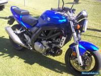 Suzuki SV1000 2007