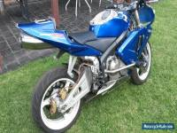 Honda 05 CBR 600 stunt bike